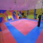 Gimnasios en Albacete | Karate infantil