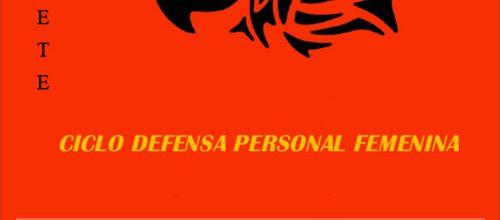 Curso Defensa personal femenina en Diciembre